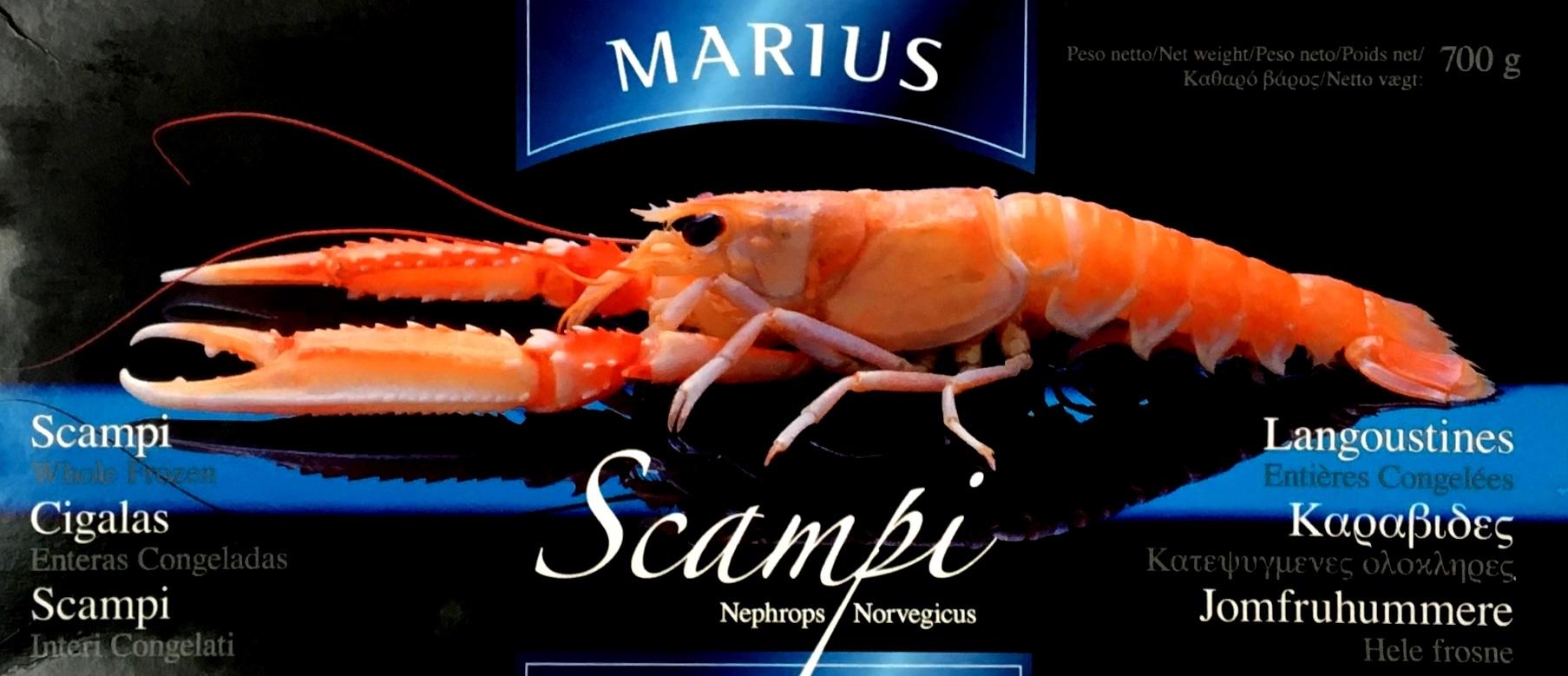 SCAMPI 8 12 MARIUS